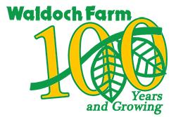 100 years of history at Waldoch Farm